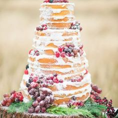 Naked wedding cake - Dani Cowan Photography