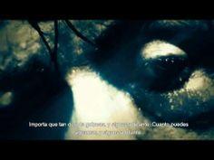 ▶ ¿Porque nos caemos? Motivational Video - subtitulos en español motivacion deportiva - YouTube fitnessclubmujer.com