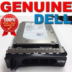 Seagate ST9146803SS SAVVIO 146,8/GB interne
