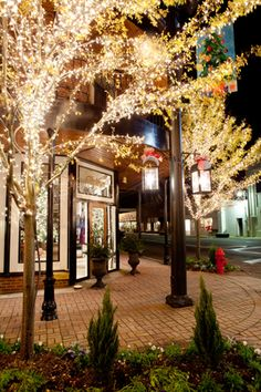 Downtown Fairhope at Christmas is  like no other place!!! Simply put, breathtaking!
