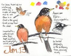 Artists' Journal Workshop: Winter Robins
