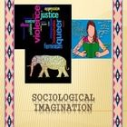 This power-point includes slides related to the concept of sociological imagination, a class activity and an individual activity. This is a step-by...