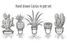 Clipart vectoriel : Beauty cacti. Hand drawn cactus in pot set