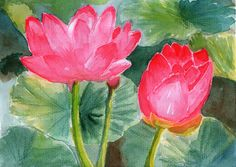 lotus flower watercolor - Google Search