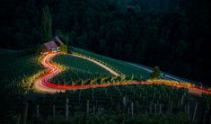 At a winery in Slovenia, the nearby road looks like a heart in this National Geographic Your Shot Photo of the Day. Canon Eos, Photography Photos, Amazing Photography, Light Photography, Yellowstone National Park, National Parks, National Geographic Photo Contest, Story Of The World, Light Images