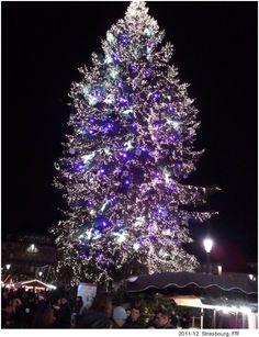 Christmas lights in Strasbourg, FR