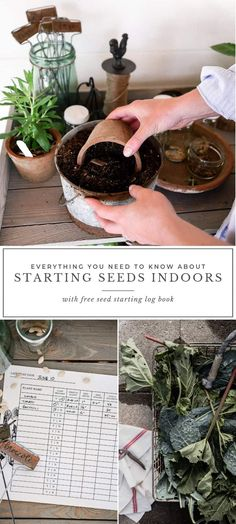 How to start seeds indoors, an easy to use seed starting log book to help you st. How to start seeds indoors, an easy to use seed starting log book to help you st… – How to sta Florida Gardening, Gardening Zones, Gardening Tips, When To Plant Seeds, Blueberry Bushes, Starting Seeds Indoors, Container Gardening Vegetables, Vegetable Gardening, Variety Of Fruits