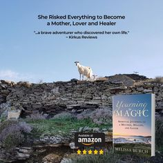 Biographies, Yearning, Adventurer, Healer, Memoirs, Brave, How To Become, Spirituality, Journey