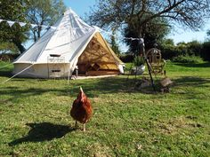 Bell Tent accommodation
