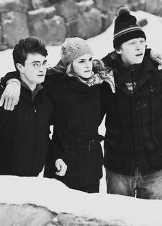 Harry Potter, Hermione Granger, and Ron Weasley: Harry Potter