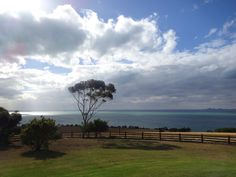 the view from Jack Rabbit Winery on the Bellarine Peninsula