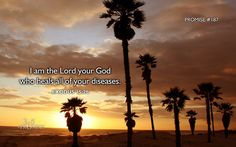 """Exodus 15:26 WEB and he said, """"If you will diligently listen to the voice of Yahweh your God, and will do that which is right in his eyes, and will pay attention to his commandments, and keep all his statutes, I will put none of the diseases on you, which I have put on the Egyptians; for I am Yahweh who heals you."""""""