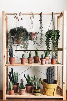 Can you have too many plants? These Ikea Ivar Shelves make a great plant stand. #ikeaivar #shelves #plantstand Deep Shelves, Small Shelves, Plant Shelves, Living Room Setup, Living Room Shelves, Ikea Ivar Shelves, Ikea Plants, Commercial Planters, Home Interior Accessories