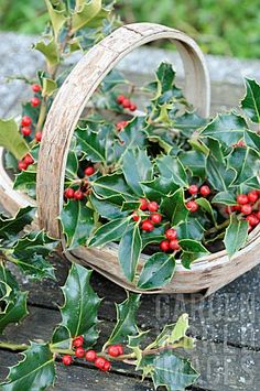 Garden World Images Christmas Is Coming, A Christmas Story, Country Christmas, Christmas Home, Christmas Crafts, Merry Christmas, Christmas Flowers, Tree Decorations, Christmas Decorations