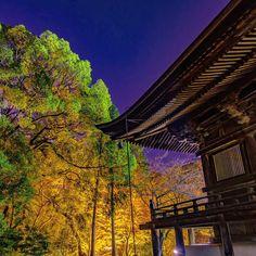 今朝はお天気は良いけど寒かったなぁ〜:;(∩´﹏`∩);: 水曜日あと少し^^頑張りましょう〜💪 Miidera Temple in Otsu City, Shiga Prefecture  #gobiwako #しがトコ #bestjapanpics  #japan_night_view  #japan_of_insta  #japan_photo_now  #phos_japan  #ptk_japan  #wp_japan  #wu_japan  #tokyocameraclub  #東京カメラ部  #jal東京カメラ部2017japan  #nikon倶楽部 #lovers_nippon  #loves_nippon  #team_jp_  #team_jp_西(滋賀) #カメラ好きな人と繋がりたい  #写真好きな人と繋がりたい  #写真撮ってる人と繋がりたい  #ファインダー越しの私の世界  #photo_shorttrip #園城寺 #三井寺