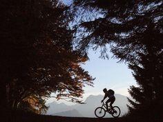 """Auf dem Rad durch die zauberhafte Stimmung eines Herbstmorgens. Rund um den Hopfensee warten herrliche Routen und das Bio-Hotel Eggensberger stellt für jeden Weg das passende Rad zur Verfügung. Auch E-Bikes, die entspanntes Radeln garantieren und dabei zu 100 Prozent mit hauseigener Sonnenenergie """"betankt"""" werden."""