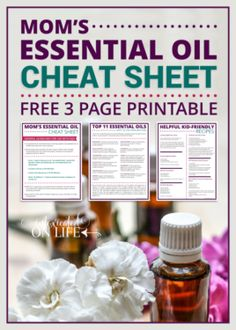 Just like Thieves®: DIY Immune Supporting Essential Oil Blend Diluting Essential Oils, Essential Oils For Colds, Making Essential Oils, Essential Oil Uses, Young Living Essential Oils, Essential Oil For Stomach Bug, Anti Itch Cream, Living Oils, Belleza Natural
