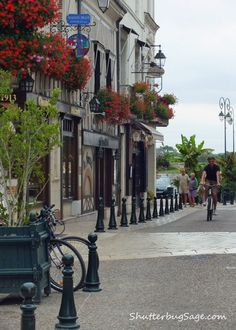 The town of Amboise, France in the Loire Valley