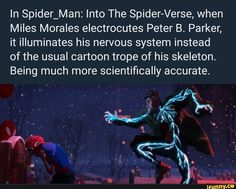 In Spider_Man: Into The Spider-Verse, when Miles Morales electrocutes Peter B. Parker, it illuminates his nervous system instead of the usual cartoon trope of his skeleton. Being much more scientifically accurate. Funny Marvel Memes, Marvel Jokes, Dc Memes, Marvel Dc Comics, Marvel Heroes, Marvel Avengers, Spiderman, Miles Morales, Fandoms