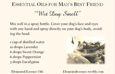No more wet dog smell! Spray a mix of water and essential oils.