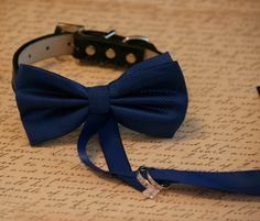 Royal Blue Dog Bow Tie, Dog ring bearer, Pet Wedding accessory, Pet lovers, Royal Blue bow attached to black dog collar on Etsy, $31.50