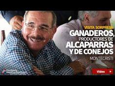 Danilo Medina otorga créditos a ganaderos, productores de alcaparras y de conejos en Guayubín - Noticias Al tiempo