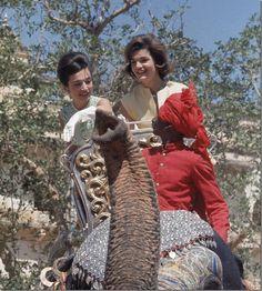 Wearing long white gloves while riding an elephant via cote de texas
