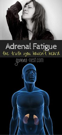 """Adrenal Fatigue: The Truth You Haven't Heard"" Gwen Brown ""Dr. Rob answers all of my questions on adrenal fatigue, and BLEW my mind.here's the truth you haven't heard about adrenal fatigue. Fatiga Adrenal, Adrenal Fatigue Symptoms, Adrenal Health, Chronic Fatigue Syndrome, Adrenal Glands, Fibromyalgia Syndrome, Health And Nutrition, Health Tips, Health And Wellness"
