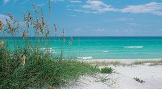 Navarre Beach, Florida has been our family's favorite vacation place for the past 20 years.