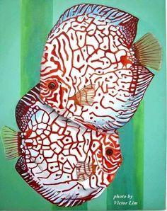 Oh my gosh... They're beautiful. #TropicalFishSaltwater #TropicalFishAquariumIdeas