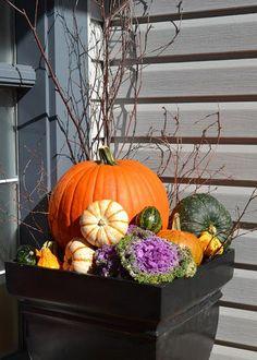 Pugh's Earthworks - Fall entryway planters, Pugh's Earthworks