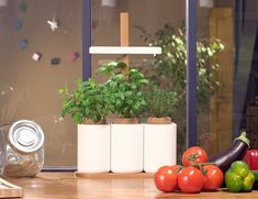 Lilo by Prêt à Pousser is your #smartgarden for home! Pre-order one now: https://www.kickstarter.com/projects/pretapousser/lilo-the-easy-way-to-grow-fresh-herbs-at-home?utm_content=bufferdd456&utm_medium=pinterest&utm_source=pinterest.com&utm_campaign=buffer #indoorgardening