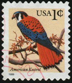 United States 1999