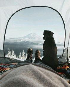 Have you been thinking about going camping? You have to plan for a camping trip regardless of how long you will be gone. The information in this article can ensure that your next camping trip is as relaxing and fun as you desire. Adventure Awaits, Adventure Travel, Nature Adventure, Foto Picture, Camping Sauvage, Into The Wild, Go Camping, Camping Guide, Camping Dogs