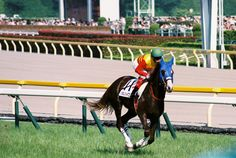 2014.06.01 Tokyo Race Course  photo by teitania