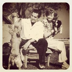 Vintage Cuba, Queens Of Comedy, Lucille Ball Desi Arnaz, I Am Jealous, Life Touch, Love Me Better, I Love Lucy, Young Love, Comedians