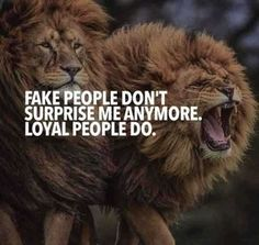 most everybody's fake. 67 Top Quotes Inspirational for Success That will Inspire You Extremely 3 Motivational Quotes For Life, True Quotes, Words Quotes, Positive Quotes, Best Quotes, Quotes Inspirational, Wisdom Quotes, Positive Life, Quotes Motivation
