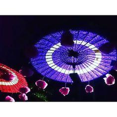 Instagram【yyuu_san】さんの写真をピンしています。 《大國魂神社☺栗祭り 人のいない深夜に行きました、 最近夜の神社の幻想的な雰囲気にひかれます😌 #大國魂神社 #栗 #府中 #傘 #和傘 #和風 #アート #芸術 #夜景 #ライトアップ #神社 #寺 #神社仏閣 #寺社仏閣 #風景 #景色 #観光 #旅 #旅行 #パワースポット #御朱印帳 #御朱印 #幻想的 #神秘的 #art #umbrella #japantravel #japantrip #shrine #temple》