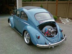 Slug ~ Beetle ~ Love Bug ~ VW