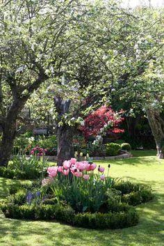 beautiful tulip planting - love it Pink Garden, Water Garden, Dream Garden, Beautiful Flowers Garden, Beautiful Gardens, The Secret Garden, Planting Tulips, Garden Cottage, Garden Beds