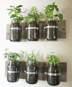 un angolo verde anche in cucina - spezie, aromi, odori ...