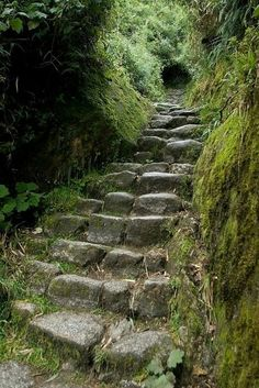 beautifully worn stairs.***Repinned by https://zipdandy.com/backyardguy. Up to 80% commission. Mobile Marketing Tools for Small Businesses from $25/m. Normoe, the Backyard Guy (1 backyardguy on Earth)