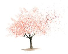 Cherry Tree  Print  from my original watercolor painting by Ireart, $18.00