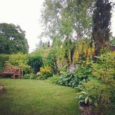 #garden #ogród #latowogrodzie #rabaty