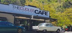 A Cudlee Café Lunch Date with an Echidna