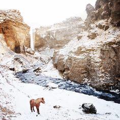 """705 gilla-markeringar, 16 kommentarer - Gígja Einarsdóttir (@gigjaeinars) på Instagram: """"Winter Wonderland❄️"""""""
