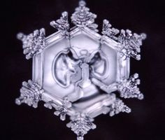 Dr. Masaru Emoto Believed that Water is 'Something Not of This Earth' : Waking Times