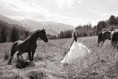 Love bridal portraits with the horses. And the simplicity of the hair- no stiff updo's.