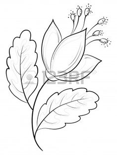 Buy Abstract Flower, Contours by OK-SANA on GraphicRiver. Abstract symbolical flower, monochrome contours, isolated Vector EPS 8 plus AI CS 5 plus high-quality Jpeg.GraphicRiver Abstract Flower Outline 4175716 GraphicRiver The Nature Outline Icons 25 Art Drawings For Kids, Art Drawings Sketches, Easy Drawings, Contour Drawings, Flower Drawings, Drawing Flowers, Drawing Drawing, Drawing Faces, Art Illustrations