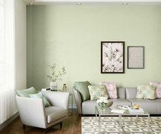 Discover Minty Ale wall paintcolour shade for your home. Choose from an exclusive range of home paint colour shades & room paint colours offered by Asian Paints. Interior Wall Colors, Bedroom Wall Colors, Wall Paint Colors, Paint Colors For Home, Living Room Colors, Wall Colours, Design Bedroom, Interior Design, Asian Paints Colour Shades
